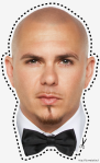 Pitbull (rapper) (entertainer) Halloween mask